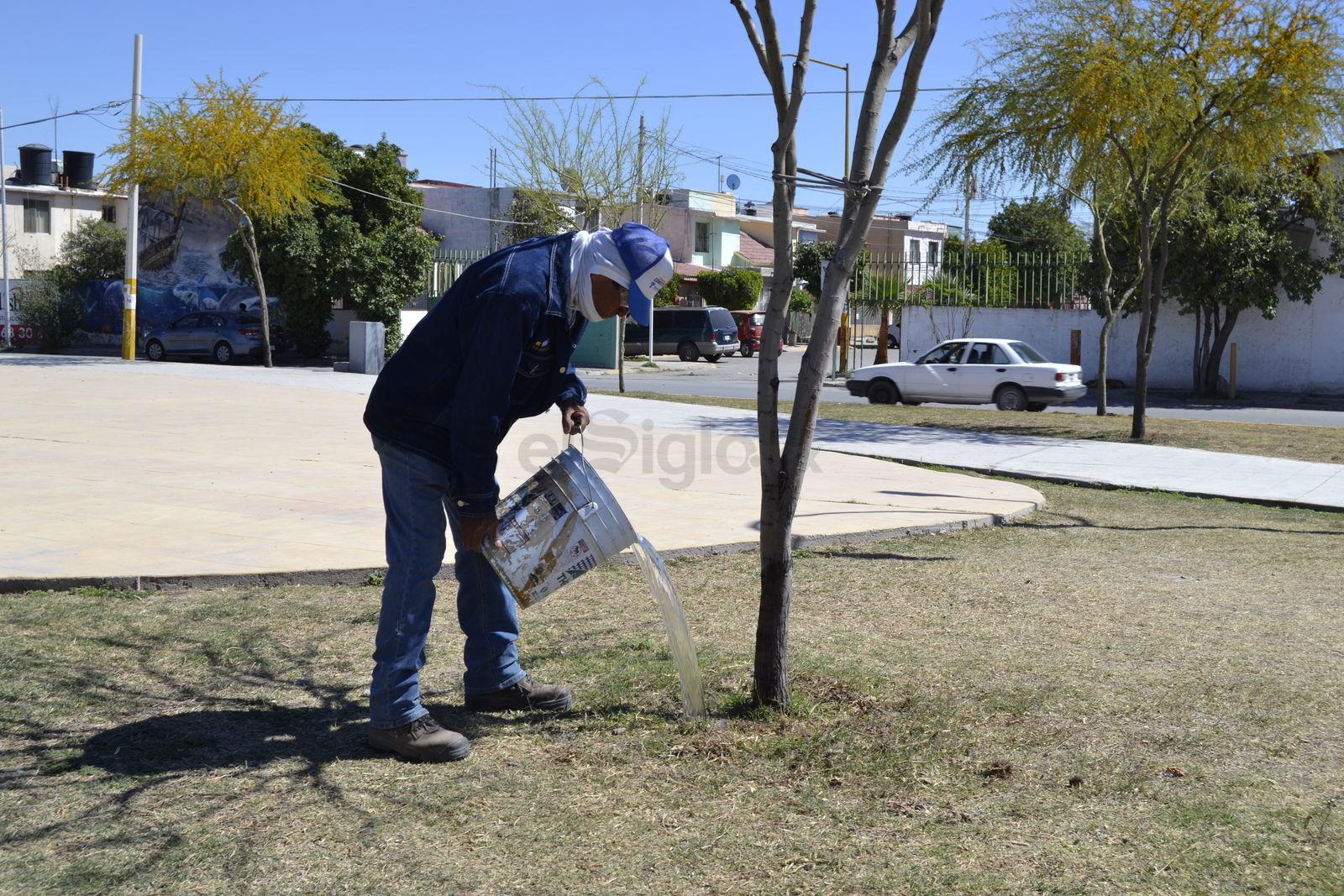"""Riegan 'a cubetazos'. Desde hace más de seis meses, los aspersores de la Línea Verde dejaron de funcionar y es fecha que no los han reparado. El personal a cargo del mantenimiento del parque riega los  árboles a """"cubetazos""""."""