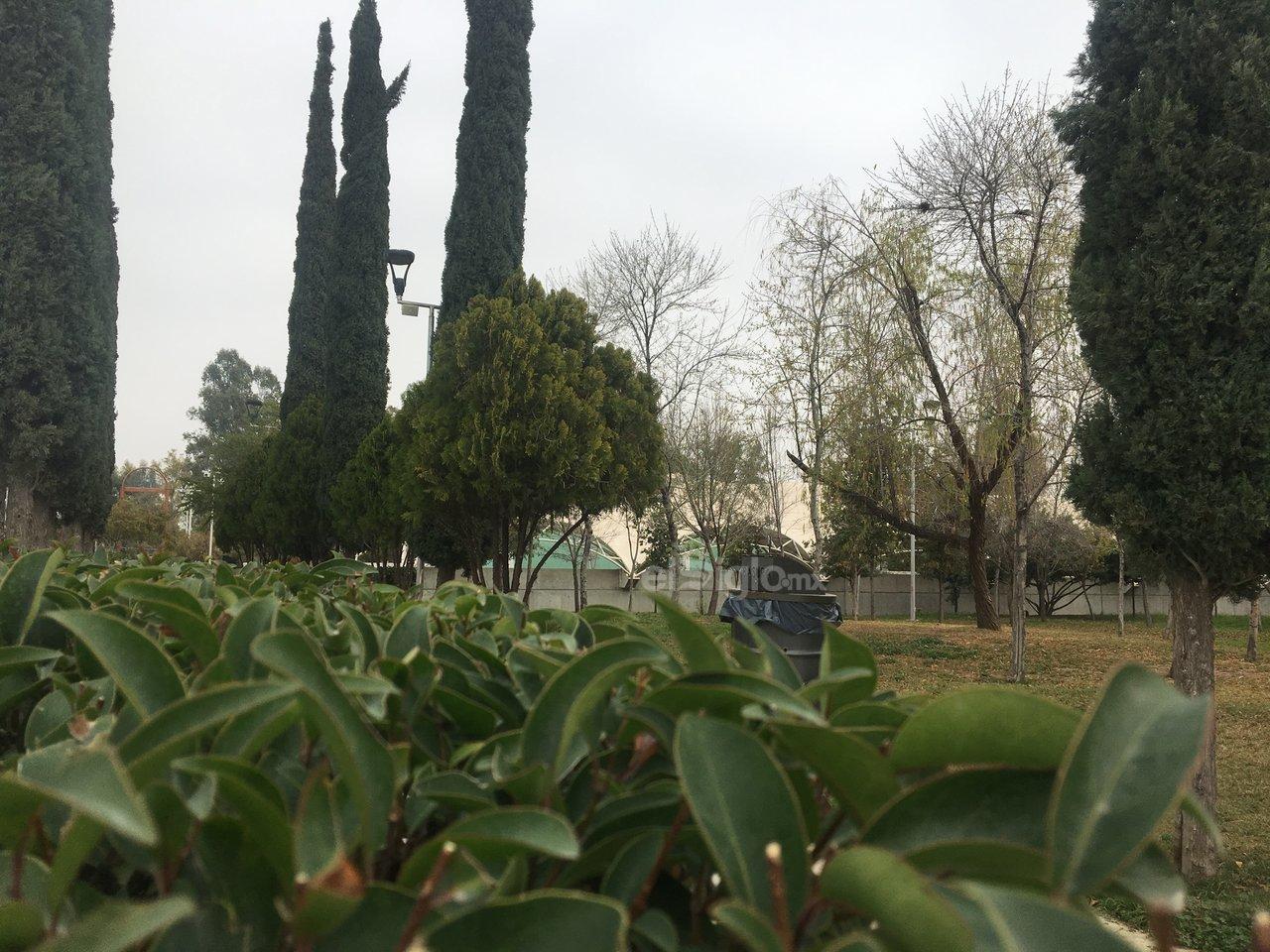 Existen más de 700 espacios catalogados como plazas, ubicados en el sector urbano de Torreón, la de mayor extensión es el bosque Venustiano Carranza.