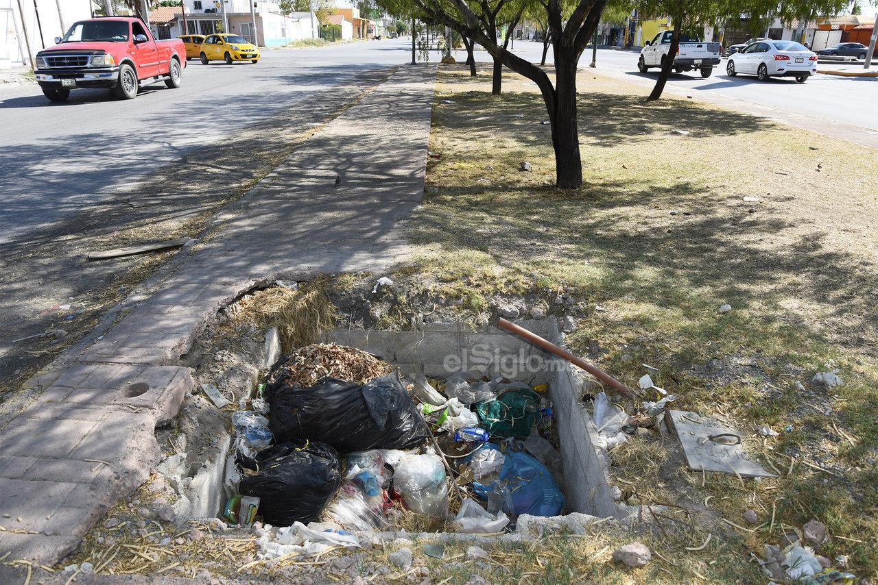 Algunos hoyos que se encuentran en las áreas verdes son utilizados por las personas para depositar todo tipo de desechos.