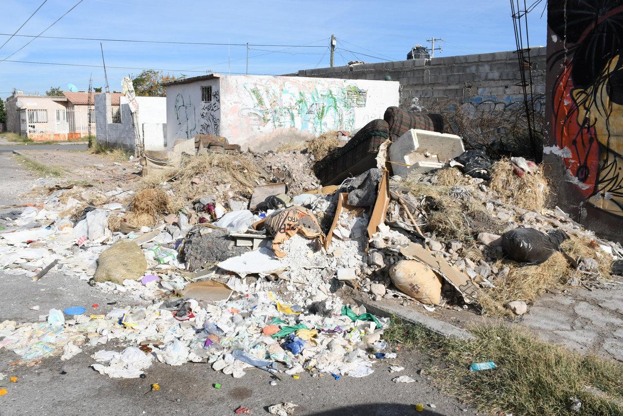 Tiraderos en sectores muy habitados. Los carromateros no tienen control y han creado sus propios depósitos de basura en terrenos baldíos o simplemente en las calles de la colonia.
