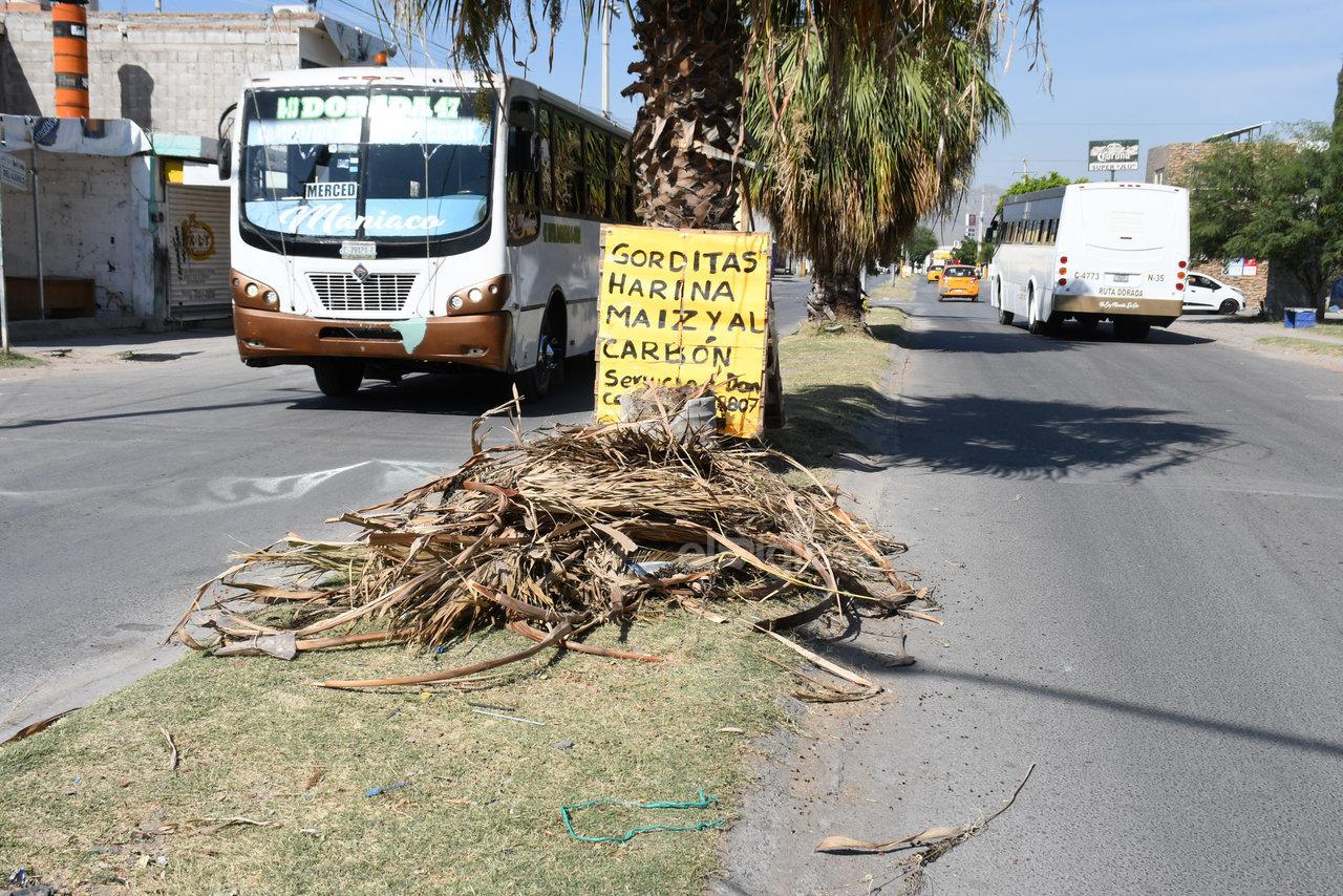 Abandono. Para muestra del descuido también del departamento de Parques y Jardines, se encuentra el camellón de la calle principal, con ramas tiradas y palmas sin podar desde hace mucho tiempo.