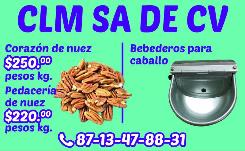 CLM SA DE CV