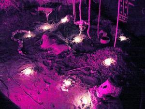En el Icocult Laguna se rescató la tradición de los primeros habitantes laguneros, en tres altares que muestran la religiosidad de esos grupos en torno a la muerte.