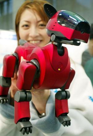 Un promotor de SONY muestra el nuevo perro robot  en Tokyo, Este robot saldrá a la venta en noviembre  y estará disponible en color rojo y blanco.