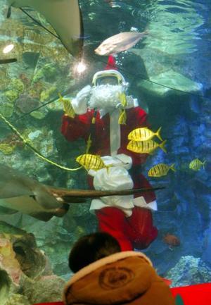 Un japonés vestido de Santa Claus, alimenta a los peces en el acuario Internacional de Tokio.
