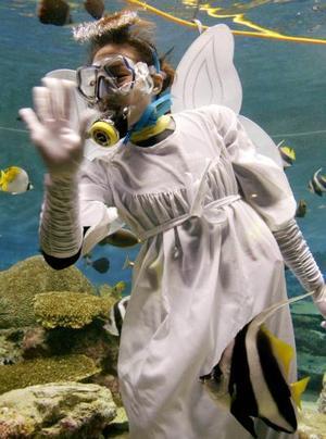 Un buzo alimenta a los peces de un acuario vestido de ángel en Seúl