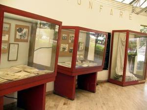 Valiosos artículos de Francisco Sarabia se exhiben en  vitrinas del museo
