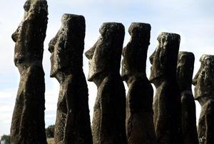 A ellos se agregan los turistas que, en busca de un recuerdo, rompieron las estatuas e incluso algunos isleños, que, con poca consideración, las quemaron tras prender fuego a sus tierras para renovar el pasto o cabalgar sobre ellas.