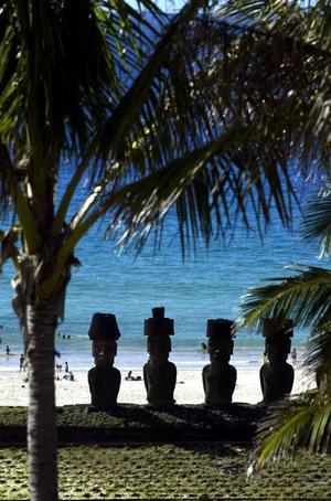 Los moai, inmensas moles de piedra volcánica o 'toba' talladas hace entre 400 y 1.300 años, que compiten por ser incluídos entre 'las siete nuevas maravillas del mundo' por los internautas, miden en promedio cuatro a seis metros y pesan sobre las 80 toneladas cada uno.