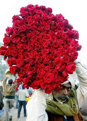 Día del Amor y la Amistad en India.