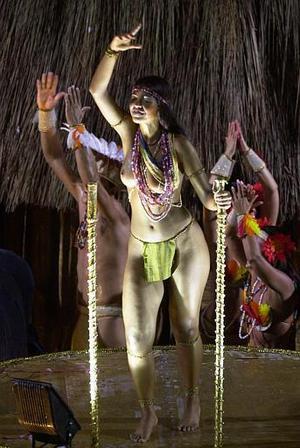 Las entradas a la fiesta del sambódromo, la principal atracción del carnaval, son algunas veces demasiado costosas para la mayoría de los brasileños, por lo que una buena parte de la población se queda a admirar los desfiles desde su casa.