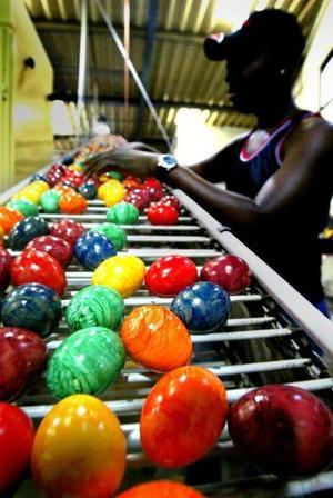 Una trabajadora inspecciona unos de los un millón de huevos de pasqua pintados producidos por la compañía Moos-Butzen en Alemania
