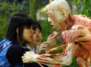 Unos chinos visitan una muestra mundial de cuerpos creados a partir de materiales plásticos en Beijing. Esta muestra es única y ha tenido mucho éxito a lo largo de varios continentes.