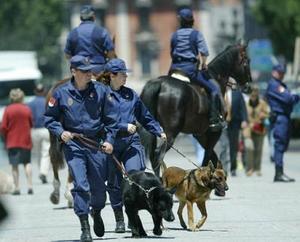 No se ha escatimado en cuanto a la organización y planeación de la seguridad en las principales avenidas de la ciudad.