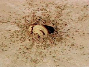 Una cápsula que transportaba la sonda espacial Génesis, de regreso de su misión de casi tres años orbitando el sol, se estrelló este en un desierto del oeste de Estados Unidos.