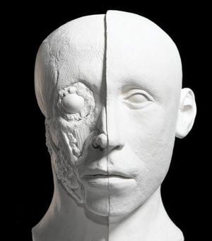 Los expertos han coincidido casi completamente en la forma del cráneo, del rostro y los ojos, pero han discrepado en torno a la configuración que tenían la nariz y las orejas del famoso faraón.