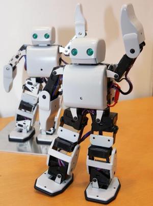 El robot humanoide 'Plen' fue presentado en la exhibición robótica internacional en Tokio .<p> El robot que puede ser manejado remotamente manejado por un  teléfono celular saldrá a la venta en 2006y tendrá un costo de $2,091 yenes.