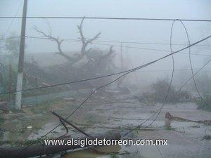 Las rachas de viento de varias decenas de kilómetros por hora, llegaron acompañadas por lluvia y granizo del tamaño de un puño.