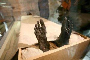 Los visitantes no quisieron perderse la oportunidad de contemplar los restos del faraón niño en su recién estrenada ubicación en una vitrina transparente, situada en el interior de su cámara mortuoria original, después de ser sacada de su sarcófago.