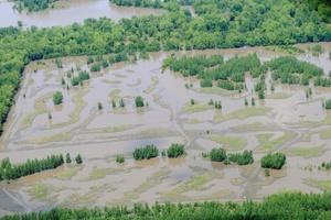 El agua rebasó  nueve terraplenes artificiales y anegó tierras de agricultura.