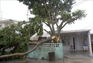 Los habitantes de Matamoros sufren los estragos del paso del huracán.