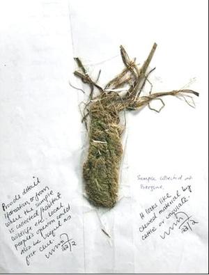 En marzo de 2008 el gerente de la Reserva natural Sakteng, en Bhután, mostró un trozo de ganado que presuntamente fue masticado por un Yeti.