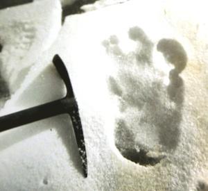 El mito del Yeti sigue siendo un misterio desde que en 1832 un explorador británico, B.H. Hodgson, dijera a guías locales que había visto una criatura de gran tamaño de dos patas con pelo largo y oscuro.