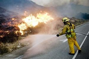 El fuego ha destruido hasta ahora más de mil 53 hectáreas de terreno, según los bomberos.