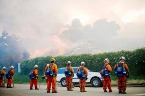 Los bomberos y la Policía de los Ángeles, que trabajan sin descanso para controlar las llamas, anunciaron  la evacuación de toda el área es obligatoria.