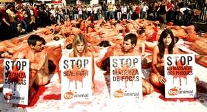 Activistas de la ONG Equanimal se concentraron en la Puerta del Sol de Madrid, desnudos y cubiertos de sangre artificial, para protestar contra la matanza de focas en Canadá.