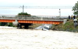 Centenares de animales han muerto ahogados, sobre todo en Tekirdag.