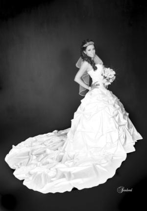 Srita. Minerva Judith García Huerta, en una fotografía de estudio, el día de su boda con el Sr. Jahir Pérez Contreras. <p> <i>Sandoval Fotografía</i>
