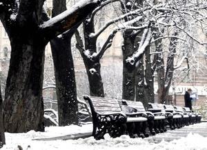 Los servicios de meteorología han informado que las intensas precipitaciones continuarán en Alemania.