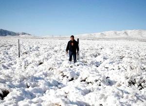 El titular de la Unidad Estatal de Protección Civil Homero Navarro, informó de la segunda precipitación de nieve en Chihuahua.