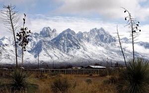 La oficina del Servicio Nacional del Clima (NWS) alertó que con la tormenta invernal, podría acumularse  hasta cinco centímetros de nieve en el suroeste de Texas, y que el fenómeno se moverá hacia el centro y norte del estado.
