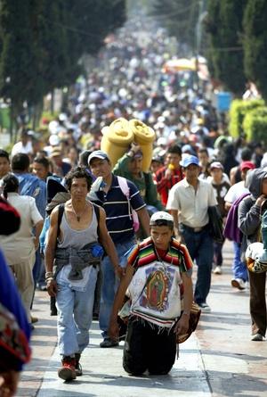 La fe se desborda en la Basílica de Guadalupe, donde el dolor y la esperanza se unen en el semblante de personas que llegan desde diversas partes del país y del mundo para contemplar la imagen de la Madre de los mexicanos.