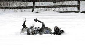 La nieve en China dificultaba las comunicaciones, mientras en Corea del Sur miles de soldados entregaban víveres a los residentes de pueblos aislados.
