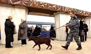 Una investigación preliminar señala la posible participación de terroristas vinculados a la región del Cáucaso.