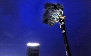 Municipios de la costa y del centro del estado, incluida su capital, Ciudad Victoria, quedaron sin servicios de energía eléctrica, agua potable y de telefonía fija y celular, tras el paso del huracán 'Alex', degradado ya a tormenta tropical.