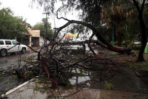 En Matamoros, la Junta de Aguas y Drenaje reportó que fueron 10 pulgadas de agua las que arrojaron las fuertes lluvias que dejó a su paso la tormenta tropical Alex.