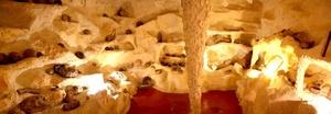 El Museo cuenta con un área acondicionada como una cueva.