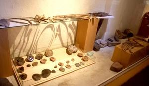 Amonites, almejas, ostras, dientes de tiburón, dientes petrificados, belemites, baculites y trilobites pueden apreciarse en el Museo de Paleontología.