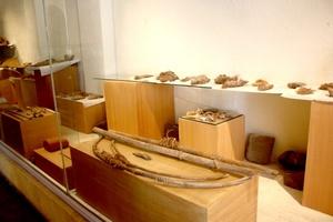 El museo posee una vasta y variada colección de piezas de fósiles marinos