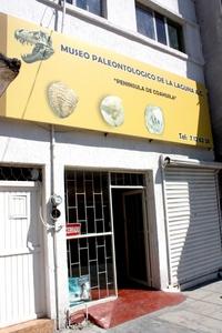 El Museo de Paleontología está ubicado en pleno centro de la ciudad de Torreón, Coahuila por la Avenida Juárez, entre las calles Leona Vicario e Ildefonso Fuentes.