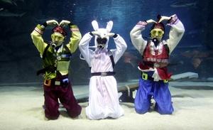 El año de 2011 es el Año de Conejo bajo el calendario chino.