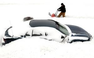 En el área triestatal, de los estados de Nueva York, Nueva Jersey y Connecticut, se registró agua nieve, granizo y lluvia, que combinada con las bajas temperaturas creó condiciones peligrosas en las carreteras y autopistas.