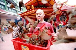 Este año hay mala suerte hacia el oeste y gran suerte al norte y sur, establece el Calendario Chino, lo que se aplica a viajes y relaciones, pero por el momento, los taiwaneses y chinos de todo el mundo, vive el período familiar de descanso y tradiciones.