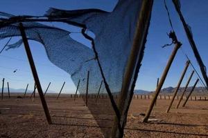 Restos de una enorme tienda de campaña ondeando al viento cerca de Bombay Beach, California.