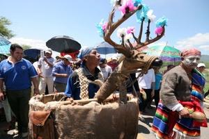 En la danza tradicional del Calalá se representan las fuerzas de la naturaleza en forma de animales mitológicos, los cuales rivalizan en una eterna lucha.
