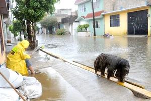 """Más de 40 mil personas afectadas, la muerte de una persona electrocutada, el desalojo de 400 familias e inundaciones en 64 colonias de la zona Sur del estado, es el saldo de la tormenta tropical """"Arlene"""" en Tamaulipas."""